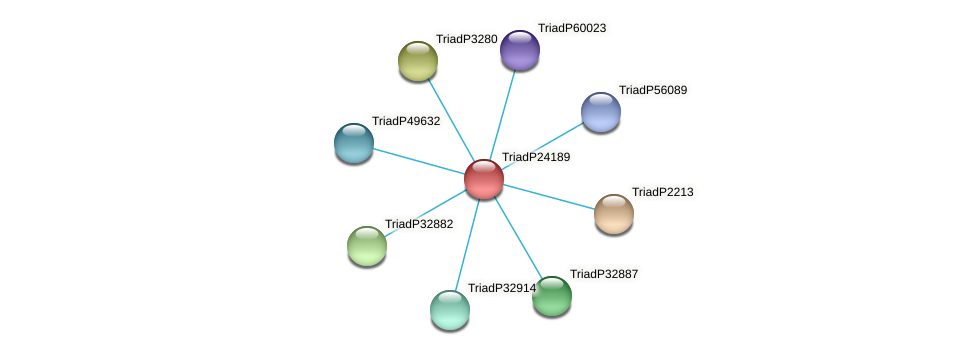 TriadP24189 protein (Trichoplax adhaerens) - STRING interaction network