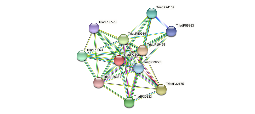 TriadP26086 protein (Trichoplax adhaerens) - STRING interaction network