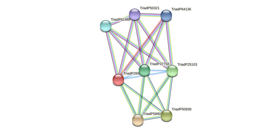 TriadP26932 protein (Trichoplax adhaerens) - STRING interaction network