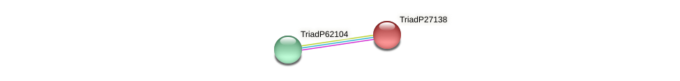 TriadP27138 protein (Trichoplax adhaerens) - STRING interaction network