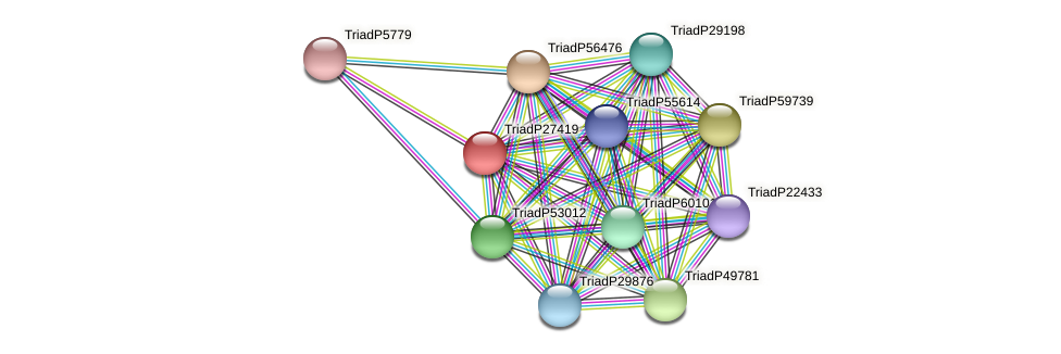 TriadP27419 protein (Trichoplax adhaerens) - STRING interaction network