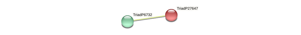 TriadP27647 protein (Trichoplax adhaerens) - STRING interaction network