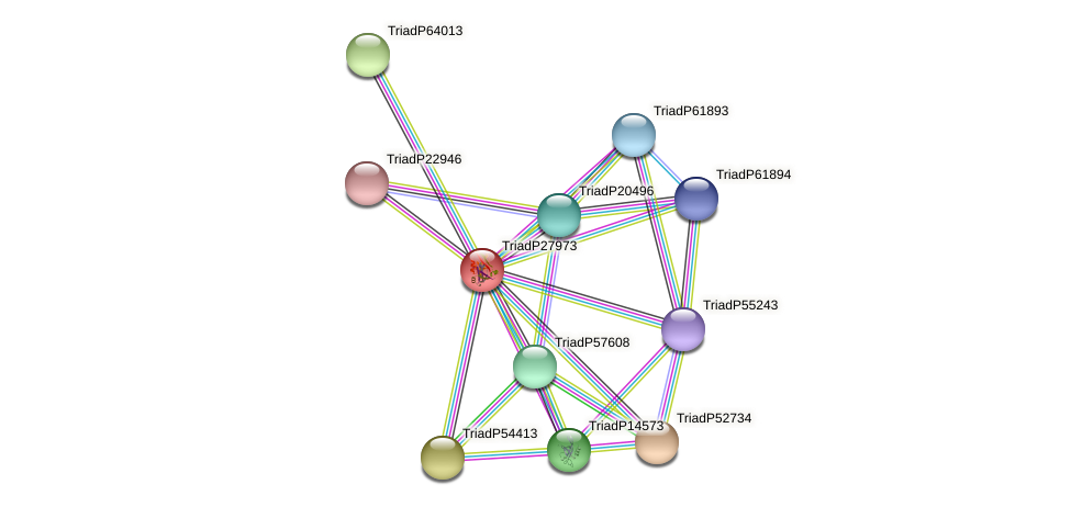TriadP27973 protein (Trichoplax adhaerens) - STRING interaction network