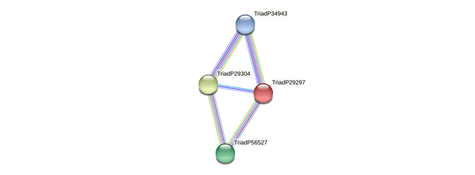 TriadP29297 protein (Trichoplax adhaerens) - STRING interaction network