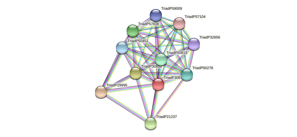TriadP30877 protein (Trichoplax adhaerens) - STRING interaction network