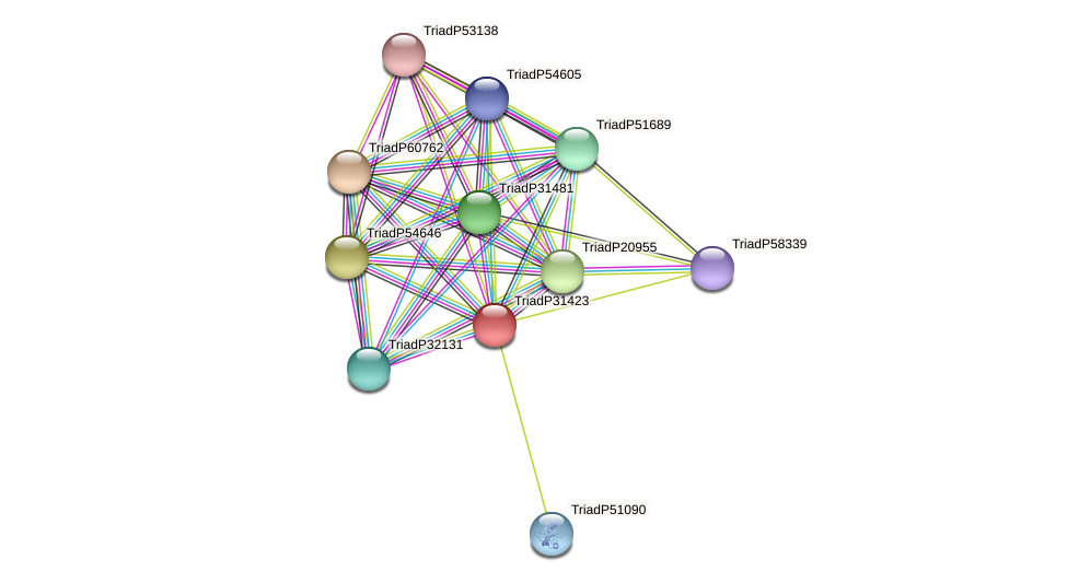 TriadP31423 protein (Trichoplax adhaerens) - STRING interaction network