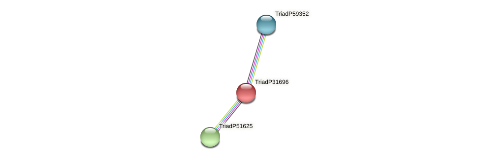 TriadP31696 protein (Trichoplax adhaerens) - STRING interaction network