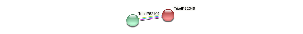 TriadP32049 protein (Trichoplax adhaerens) - STRING interaction network