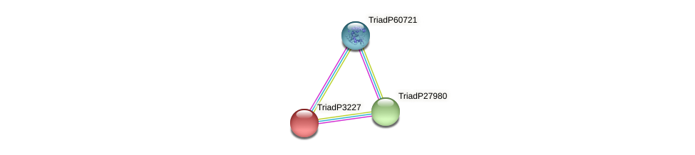 TriadP3227 protein (Trichoplax adhaerens) - STRING interaction network