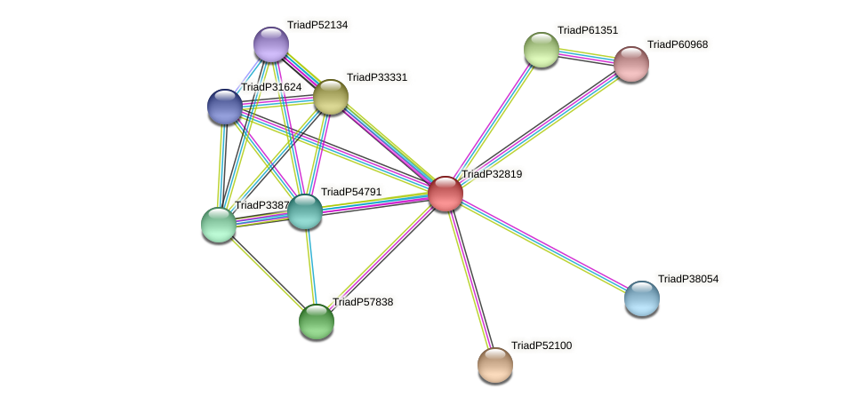 TriadP32819 protein (Trichoplax adhaerens) - STRING interaction network