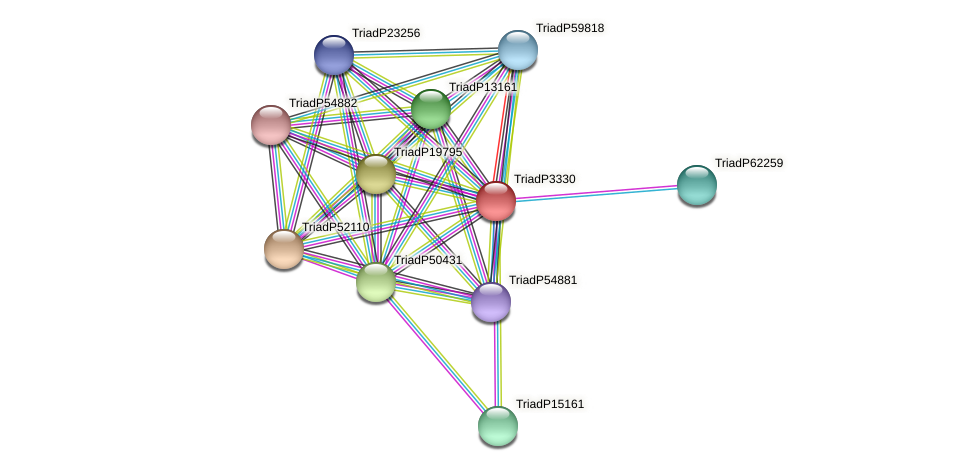 TriadP3330 protein (Trichoplax adhaerens) - STRING interaction network