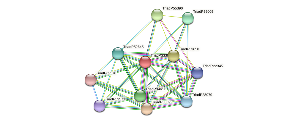 TriadP33397 protein (Trichoplax adhaerens) - STRING interaction network