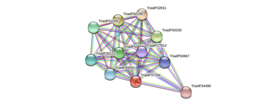 TriadP37264 protein (Trichoplax adhaerens) - STRING interaction network