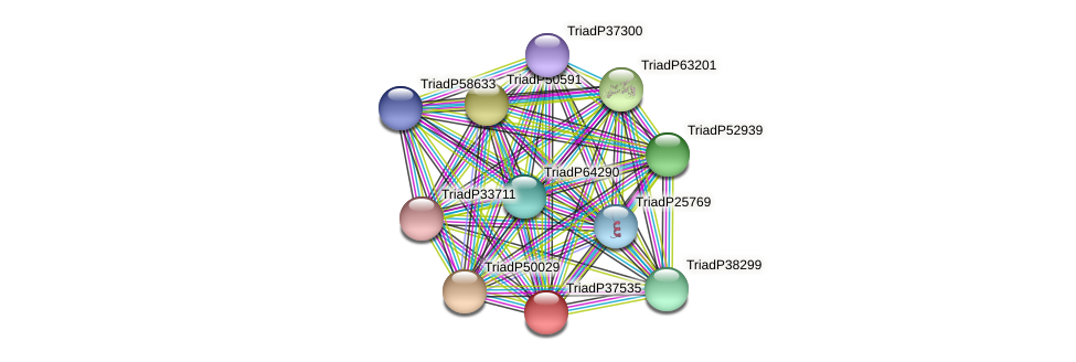 TriadP37535 protein (Trichoplax adhaerens) - STRING interaction network