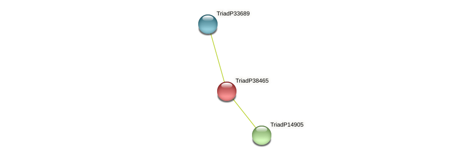 TriadP38465 protein (Trichoplax adhaerens) - STRING interaction network