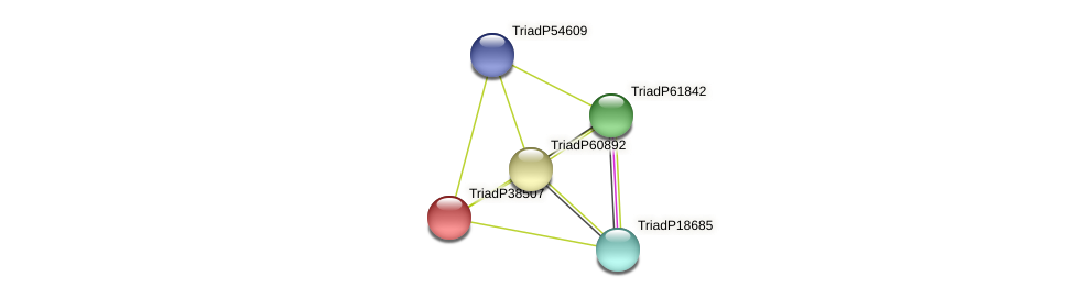 TriadP38507 protein (Trichoplax adhaerens) - STRING interaction network