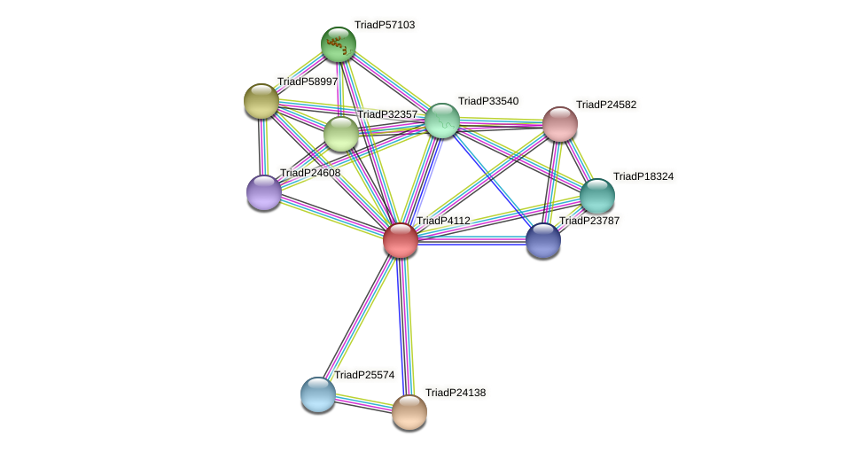 TriadP4112 protein (Trichoplax adhaerens) - STRING interaction network