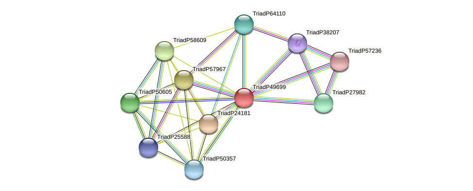 TriadP49699 protein (Trichoplax adhaerens) - STRING interaction network