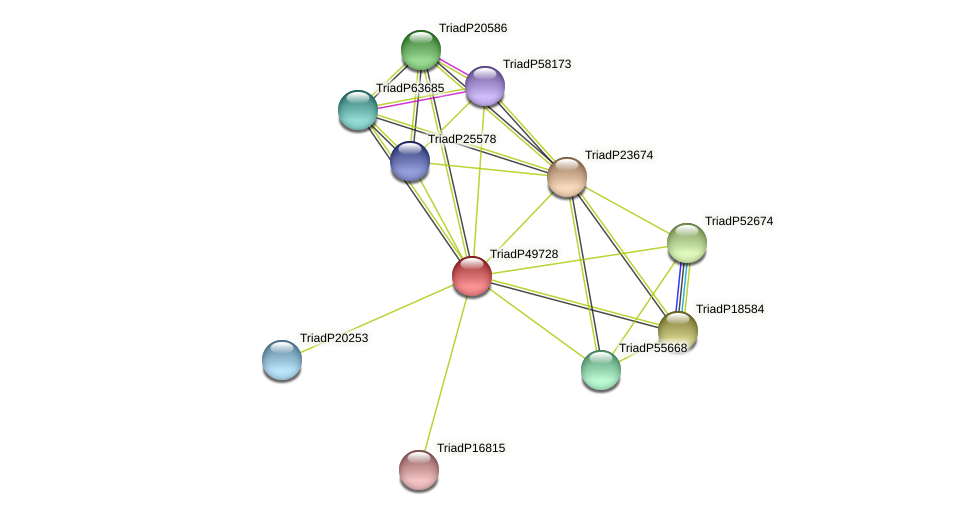 TriadP49728 protein (Trichoplax adhaerens) - STRING interaction network