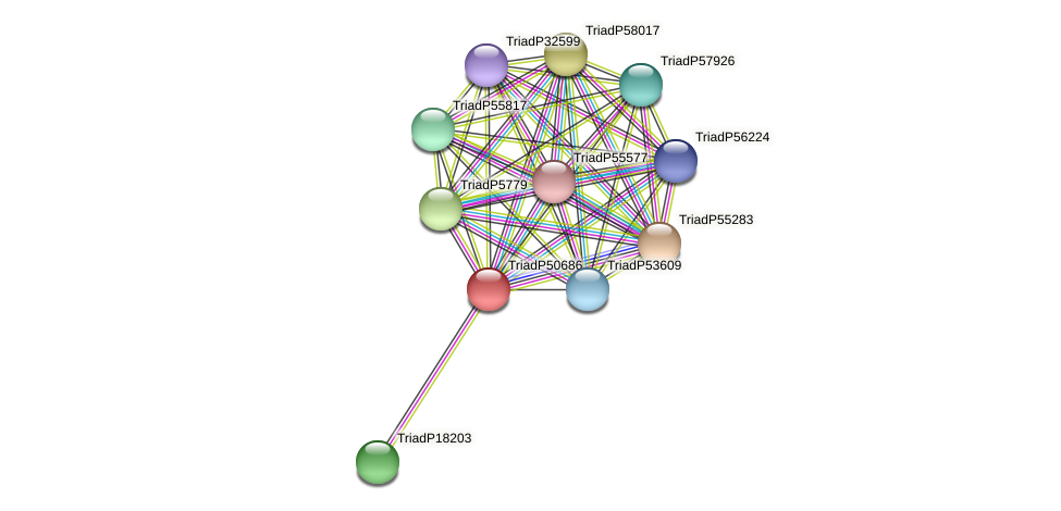 TriadP50686 protein (Trichoplax adhaerens) - STRING interaction network