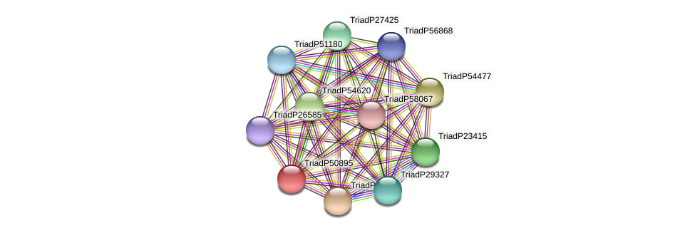 TriadP50895 protein (Trichoplax adhaerens) - STRING interaction network