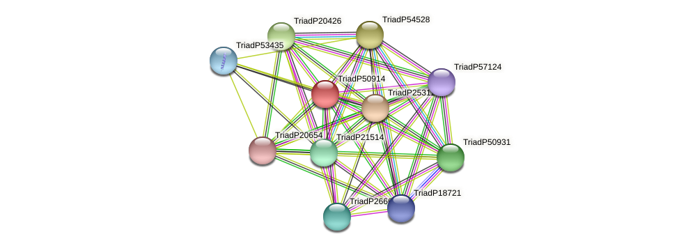 TriadP50914 protein (Trichoplax adhaerens) - STRING interaction network