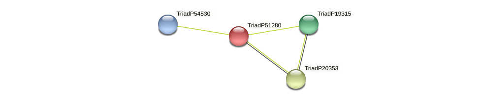 TriadP51280 protein (Trichoplax adhaerens) - STRING interaction network