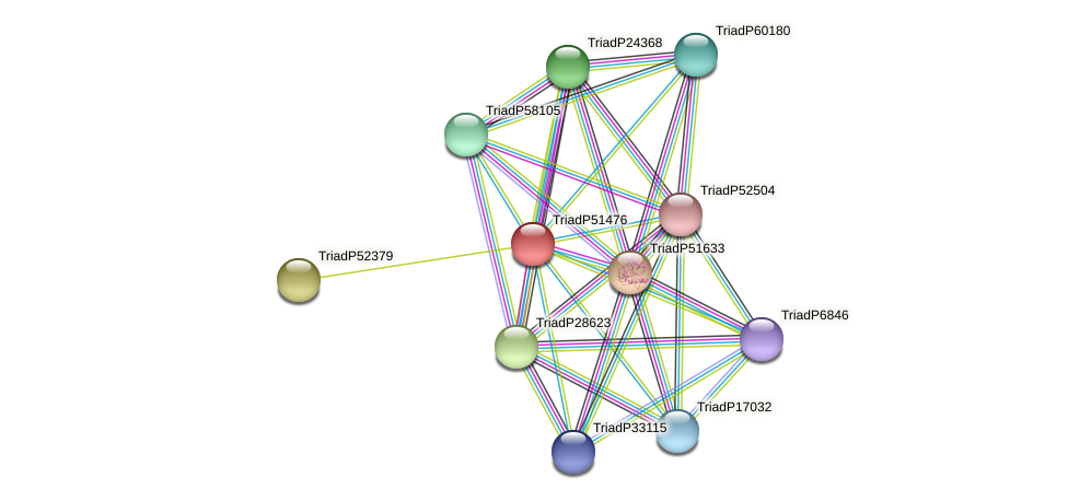 TriadP51476 protein (Trichoplax adhaerens) - STRING interaction network
