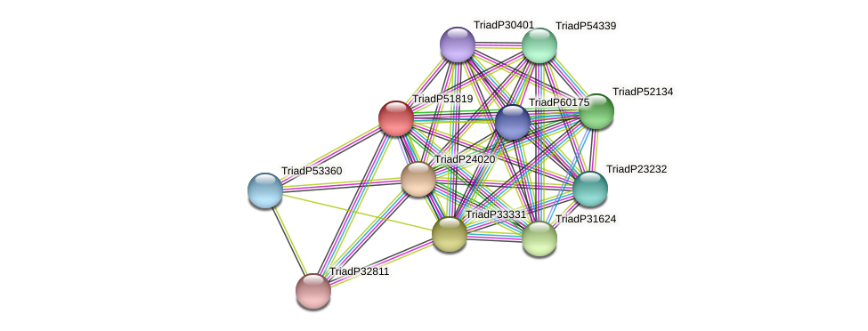 TriadP51819 protein (Trichoplax adhaerens) - STRING interaction network