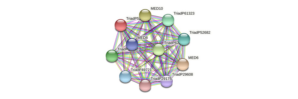TriadP52232 protein (Trichoplax adhaerens) - STRING interaction network