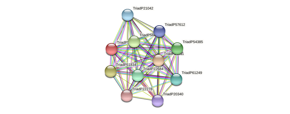 TriadP52425 protein (Trichoplax adhaerens) - STRING interaction network