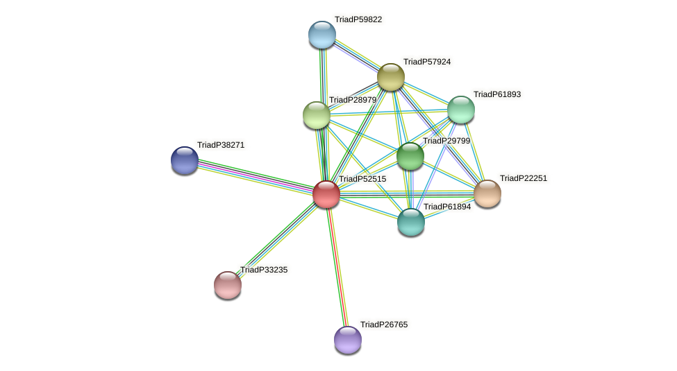 TriadP52515 protein (Trichoplax adhaerens) - STRING interaction network
