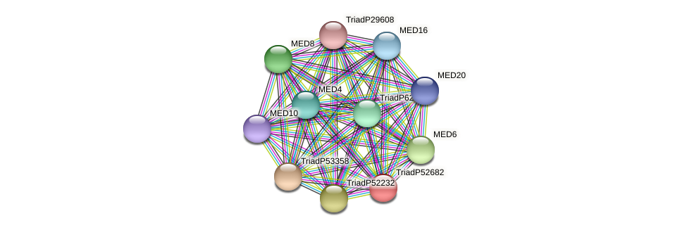 TriadP52682 protein (Trichoplax adhaerens) - STRING interaction network