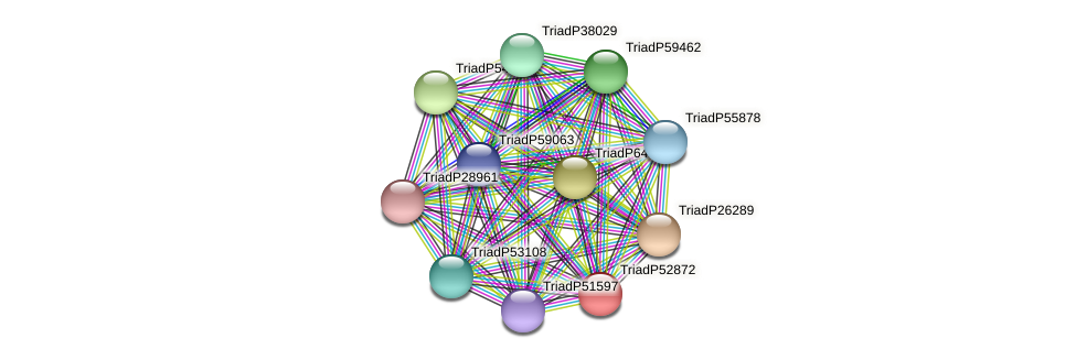 TriadP52872 protein (Trichoplax adhaerens) - STRING interaction network