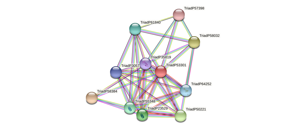 TriadP53301 protein (Trichoplax adhaerens) - STRING interaction network