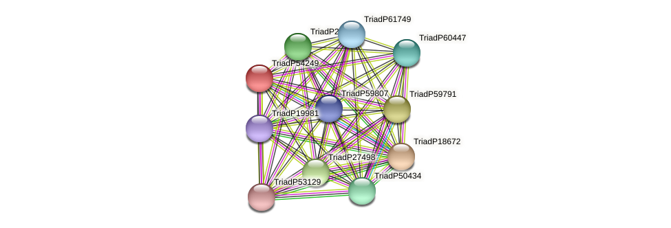 TriadP54249 protein (Trichoplax adhaerens) - STRING interaction network