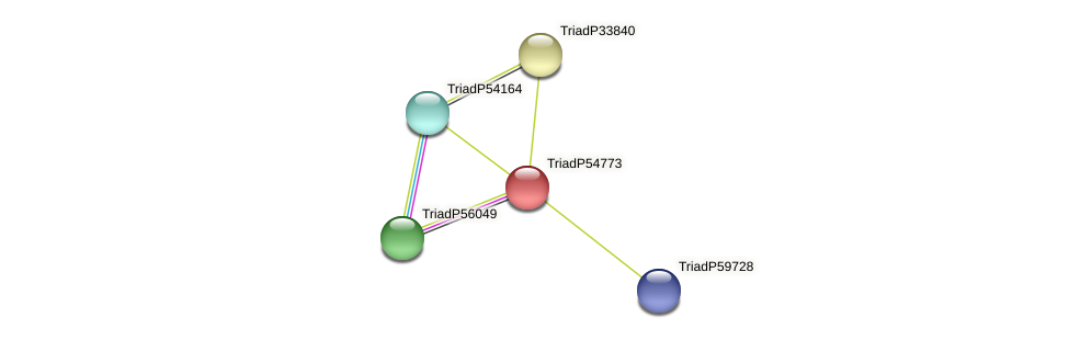 TriadP54773 protein (Trichoplax adhaerens) - STRING interaction network