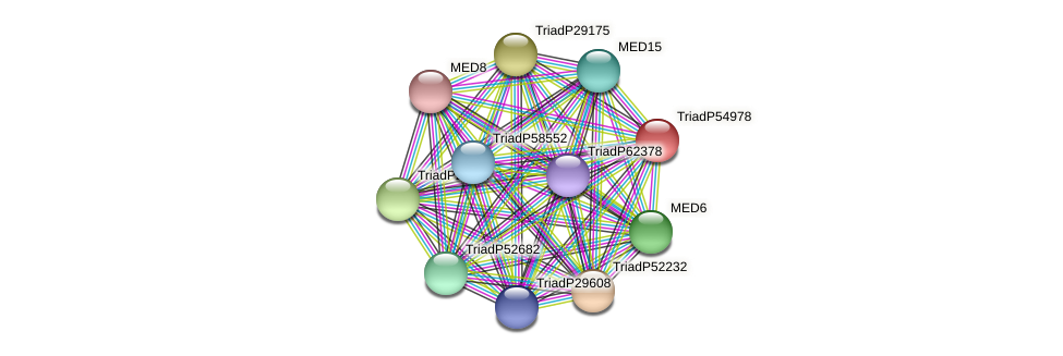 TriadP54978 protein (Trichoplax adhaerens) - STRING interaction network