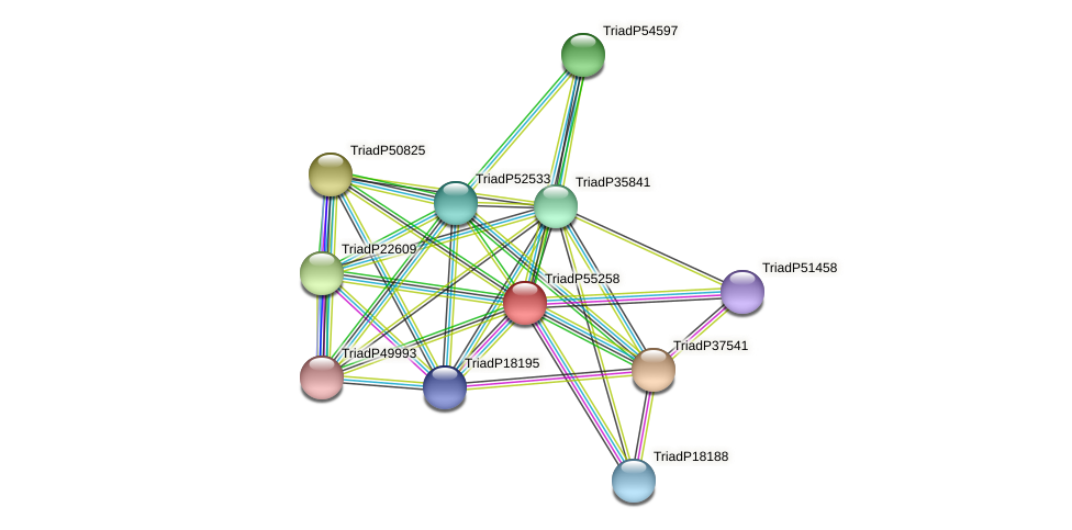 TriadP55258 protein (Trichoplax adhaerens) - STRING interaction network