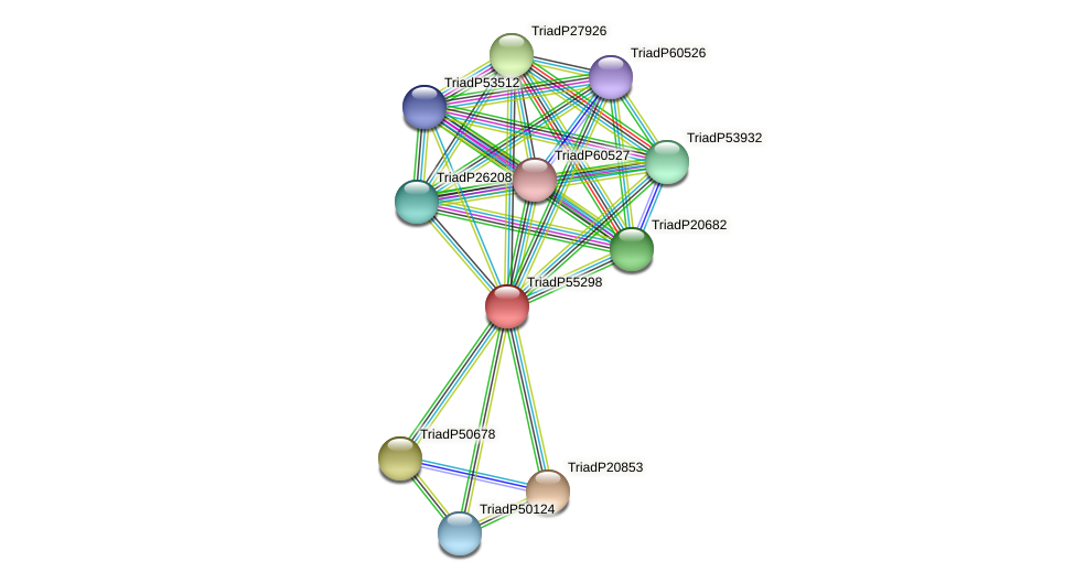 TriadP55298 protein (Trichoplax adhaerens) - STRING interaction network