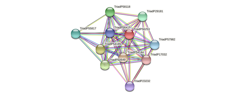 TriadP56253 protein (Trichoplax adhaerens) - STRING interaction network