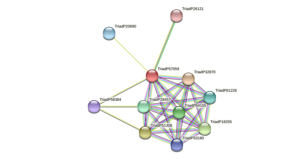 TriadP57059 protein (Trichoplax adhaerens) - STRING interaction network