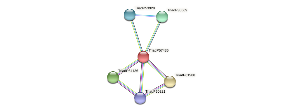 TriadP57436 protein (Trichoplax adhaerens) - STRING interaction network