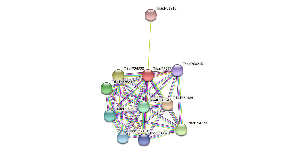 TriadP57765 protein (Trichoplax adhaerens) - STRING interaction network