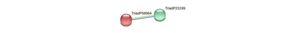 TriadP58964 protein (Trichoplax adhaerens) - STRING interaction network