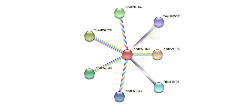 TriadP59150 protein (Trichoplax adhaerens) - STRING interaction network