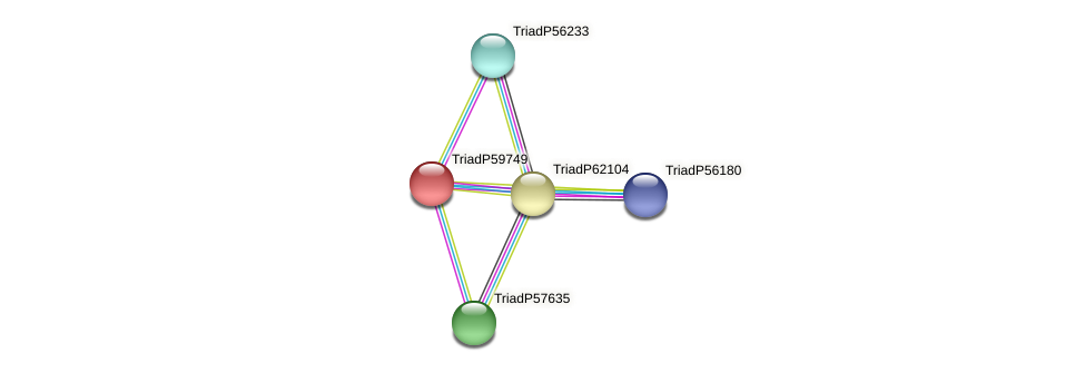 TriadP59749 protein (Trichoplax adhaerens) - STRING interaction network