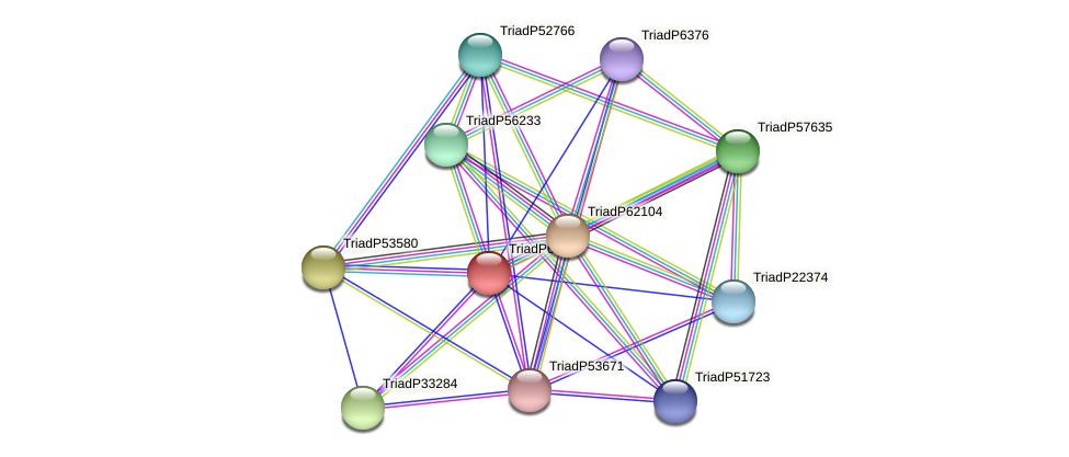 TriadP60111 protein (Trichoplax adhaerens) - STRING interaction network
