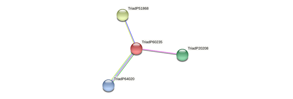 TriadP60235 protein (Trichoplax adhaerens) - STRING interaction network