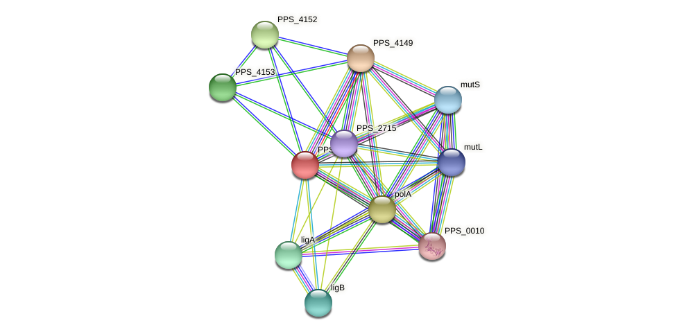 PPS_4150 protein (Pseudomonas putida S16) - STRING interaction network